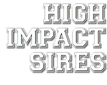 HIGH IMPACT SIRES